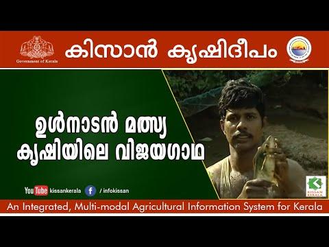 Success Story Of Inland Fish Cultivation By Sri. Jomy And Krishnankutty , Vamanapuram.  Episode- 634
