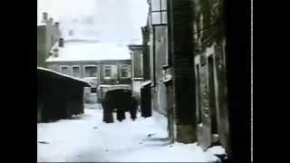 Док. фильм Ю.Ю.Воробьевского
