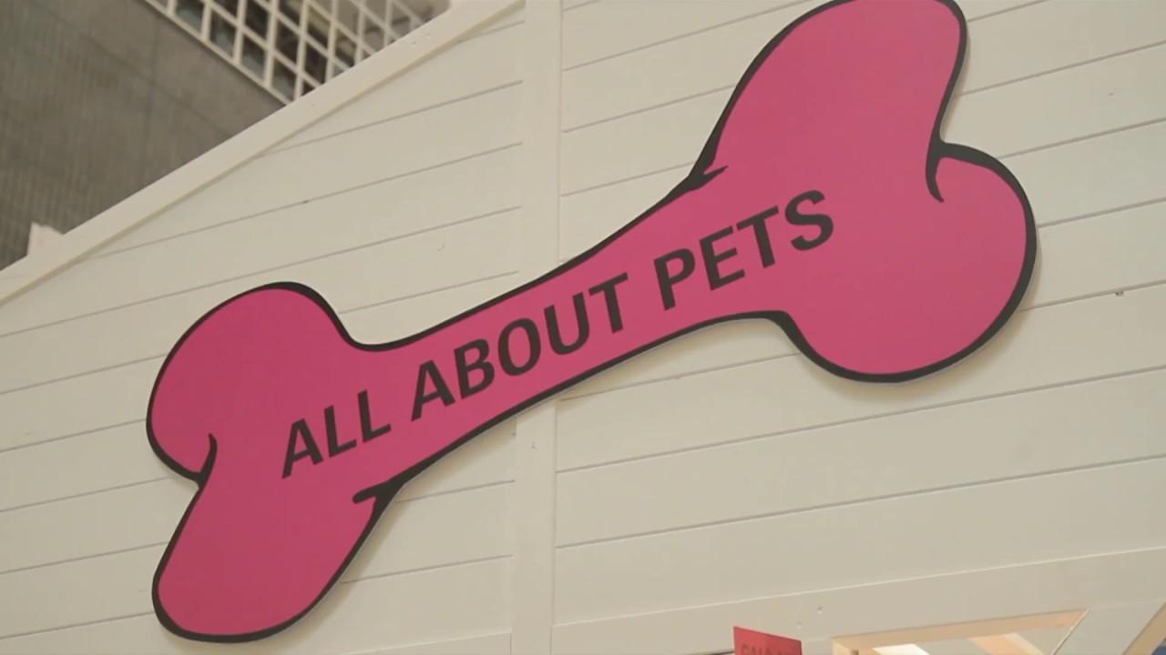 Heimtextil 2018: All about pets (EN)