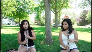 ME! - Taylor Swift ft. Brendon Urie (Clarinet Cover)
