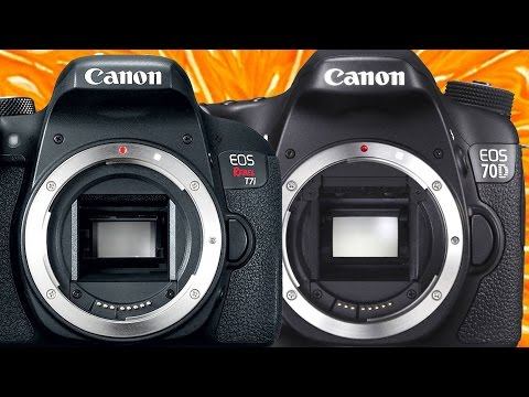 Canon T7i vs Canon 70D - Which One is Better?