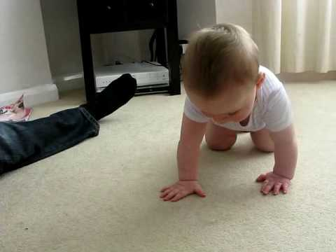 Baboo third crawl.mp4