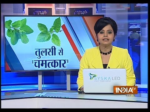 Tulsi Leaves Can Help Fight Cancer says a Research - India TV
