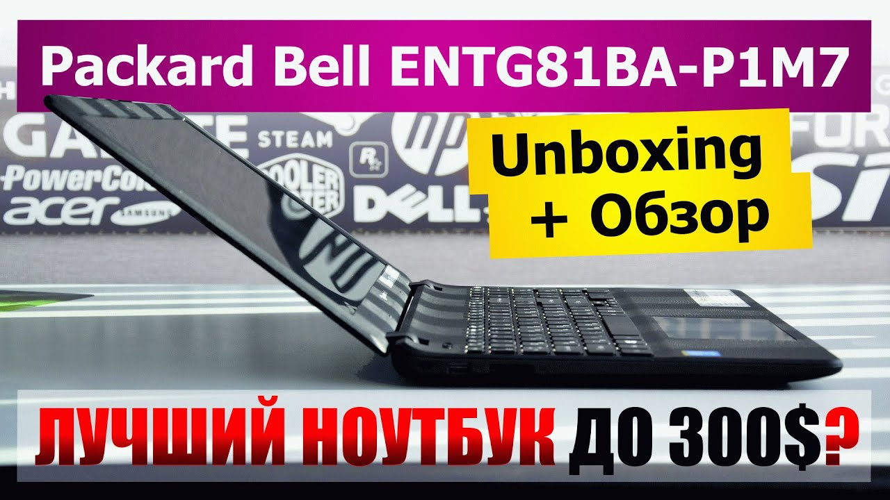 AcerBell или замена корпуса Packard Bell EasyNote TV44HC на корпус .
