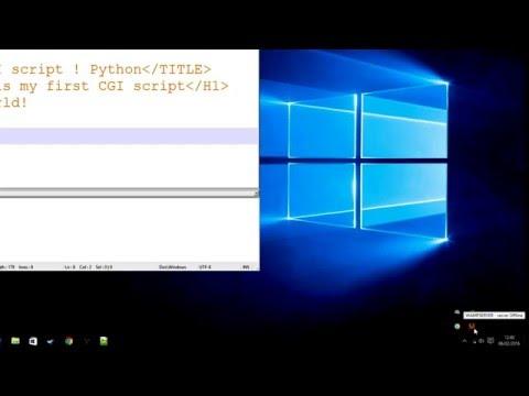 Using WAMP server to run cgi python , cgi-bin , PHP , apache , scripts