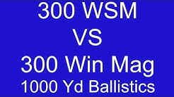 300 WSM vs 300 Win Mag 1000 Yard Ballistic comparison - Part 1