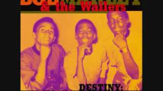 Wailing Wailers - Where Is My Mother (Acoustic Version)