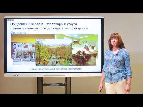 Видеоурок экономика и государство 11 класс