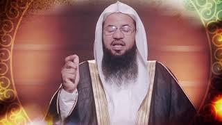 منارات قرآنية د. محمد علي الشنقيطي