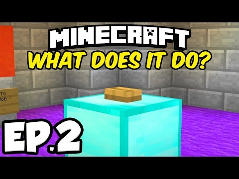 Minecraft: DON'T PRESS THE BUTTON Ep.2 - DESTROY THE CURSED BOOK!!! (Minecraft Custom Map)