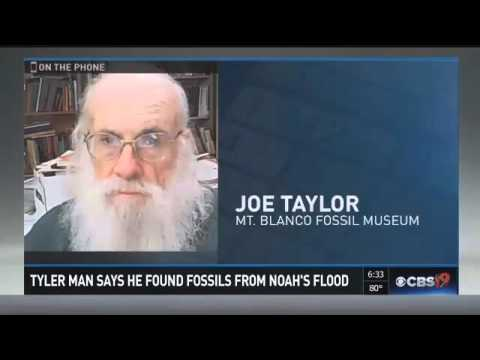 Texas Man Finds Hard Evidence Of Noah's Flood While Digging In Aunt Sharon's Garden