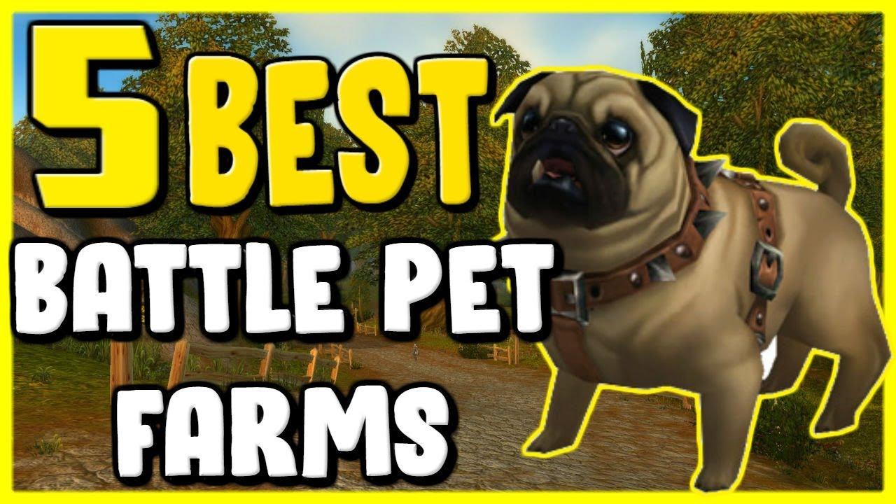 Best Battle Pets Wow 2019 5 Best Battle Pet Farms In WoW BFA 8.2   Gold Farming, Gold Making