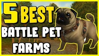 5 Best Battle Pet Farms In WoW BFA 8.2 - Gold Farming, Gold Making