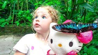 Milusik Lanusik plays with color butterflies