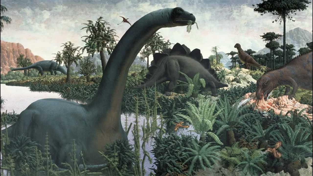 History Vs Natural History
