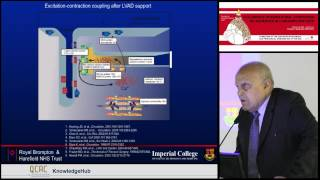 M Yacoub - Mechanisms and implications of myocardial recovery in LVAD patients