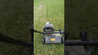 Çim ve toprağı havalandırma tırmık çekme