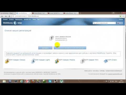 Как посмотреть свой счет на Webmoney