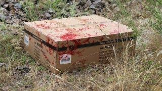 Eine Mysteriöse Kiste im Wald gefunden!