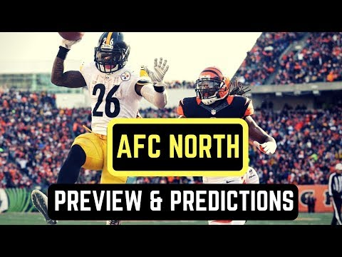 AFC North Division Preview   NFL Predictions 2017