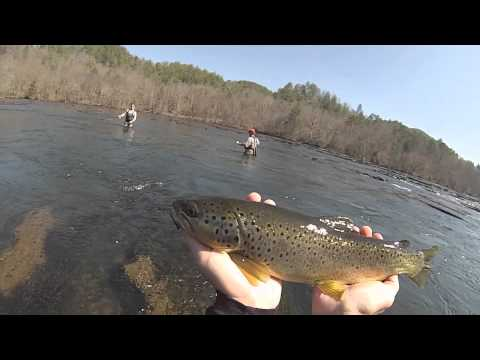 Tennessee Fly Fishing- Hiwassee River 2014