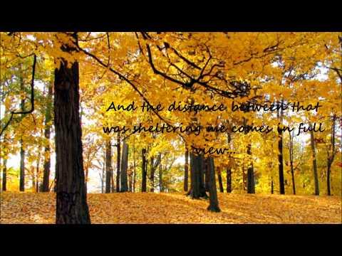 Sara Bareilles - Breathe Again (Lyrics)