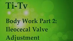 Body Work Part 2: Ileocecal Valve Adjustment