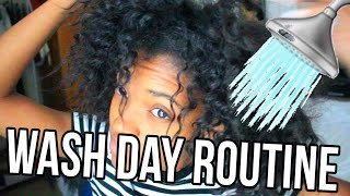 NATURAL HAIR WASH DAY ROUTINE!