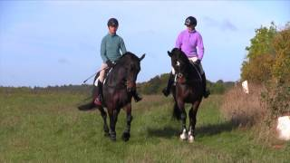 How to create a bold horse whilst out hacking with Lucinda Fredericks | Horse&Rider