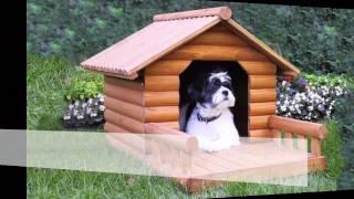 Những lưu ý với Cách làm chuồng chó đủ tiêu chuẩn
