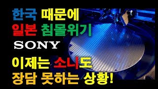 한국 때문에 일본 침몰위기, 이제는 소니도 장담 못하는 상황