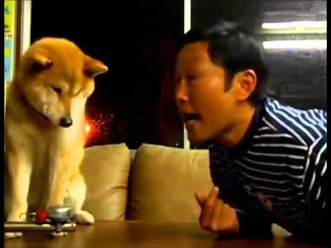Dog Rejects Kisses