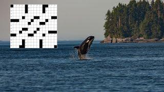 Something Fishy | New York Times Crossword Puzzle Walkthrough | Tuesday, November 23rd 2020