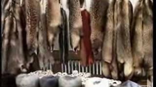 Chinese fur farms cruelty 1. Some Material May Be Inappropriate For Children.