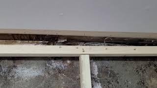 곰팡이 해결 이거밖에 철거 복원작업 하수구냄새차단 세면…