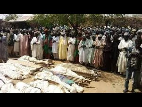 Senator Explains how 100 Were Killed in Sokoto State Nigeria