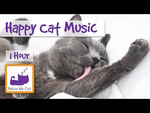 Make Your Cat Happy with Soothing Cat Music - Perfect for Anxious and Nervous Cats