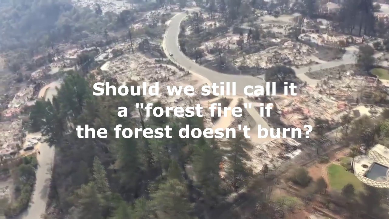 Image result for california fires dew