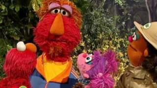 Sesame Street: Exploring Outdoors