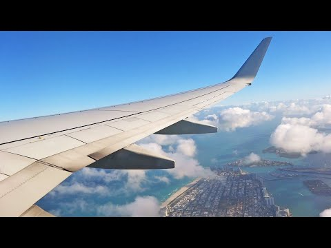 American Airlines Boeing 737 Take Off At Miami International Airport