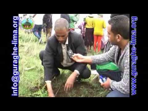 Green Development Campaign by Guraghelima New 2015