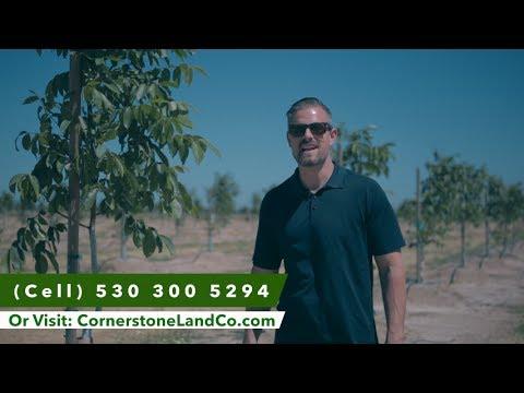 820.4 Chandler Walnut Orchard | Cornerstone Land Company