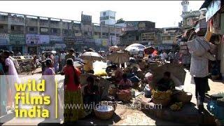 Street vendor selling fresh fruit - Mysore