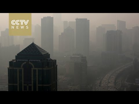 WHO: 92 percent of global population live in polluted areas