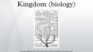 Kingdom (biology)