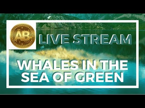 Cryptocurrency and Altcoin Buzz Saturday Market Check- Whales in the Sea of Green?