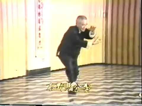 (南懷瑾)楊氏太極拳