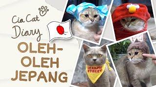 Pernak Pernik Kucing dari Jepang Cia Cat Diary Ep 36