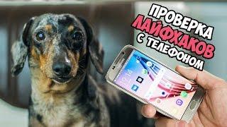 Проверка Лайфхаков с телефоном | Проектор своими руками | DIY на русском, Лайфхак