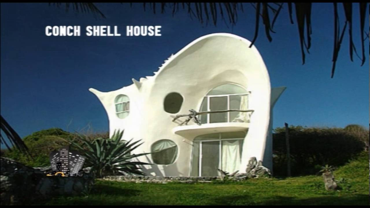 Conch Shell House Youtube - Conch-shell-house